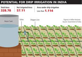 Drip Irrigation Huge Scope For Adoption In Indian Farms