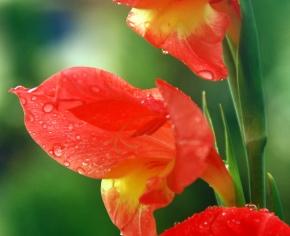 Chasing Rains… #Indian #Monsoon2012