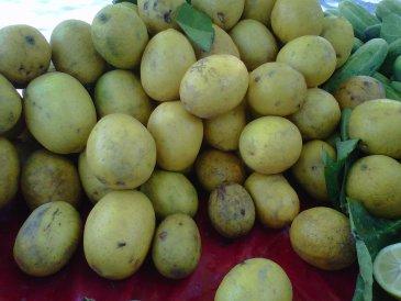 Lemonade at Bheem Taal, Nainital, Uttarakhand - Nectar of pahari Nimbus