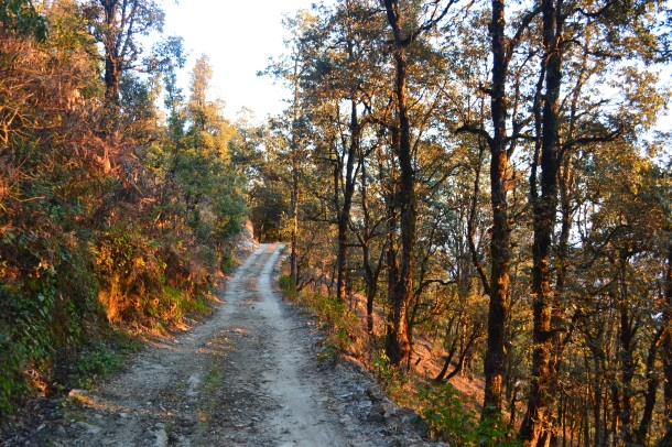Glowing path - Pithoragarh, Uttarakhand