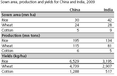 Yield per hectare India Vs China