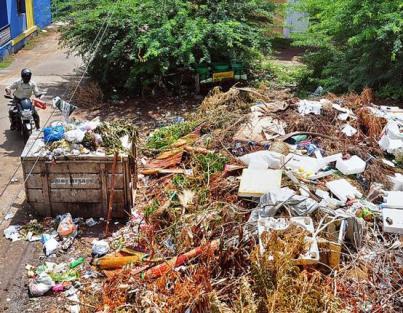 Food is a huge part of garbage dumps