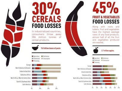 Food wastage across the world