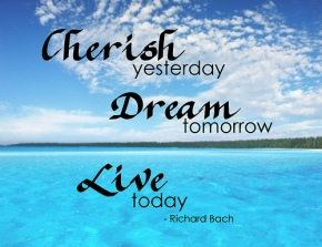 #DailyBookQuote 7June13 : Richard Bach's Jonathan LivingstoneSeagull