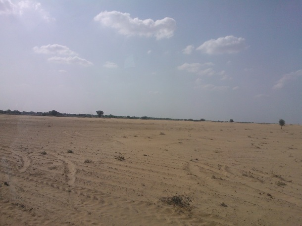 Desert : Sri Ganganagar, Rajasthan