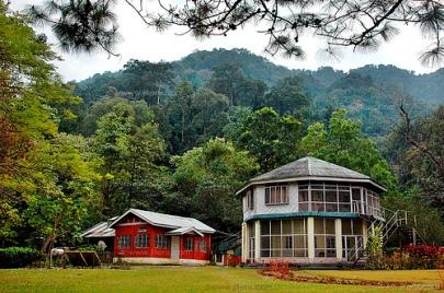 Namdapha National Park, Arunachal Pradesh