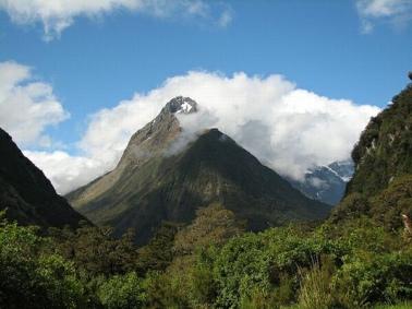 Namdapha National Park in Arunachal Pradesh