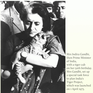 1973 India starts Project Tiger - a campaign to save the tiger from extinction.