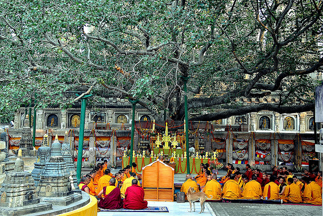 Bodh Gaya India  City new picture : Bodh Gaya, India