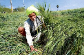 Climate Change: A Tough Challenge for Next Government inIndia