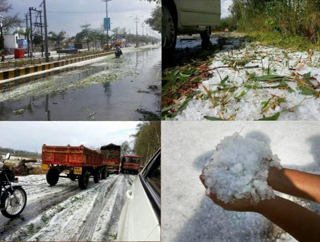 Crops damaged by hailstorm in India
