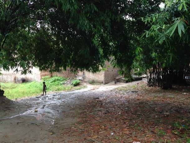 Rural Bihar - Wandering Alone